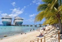 Is it good to look for cruise reviews