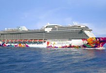 Reasons to book the dream cruise